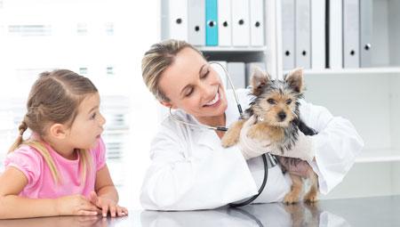 regelmäßige Tierarztbesuche sind Pflicht