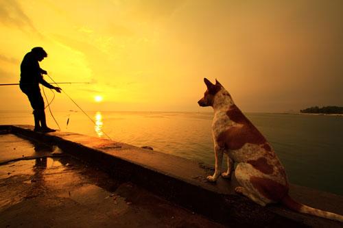 Warten auf den Lachs :-)