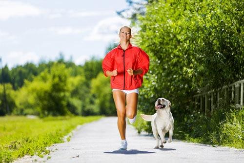 ernaehrung-fuer-sportliche-hunde