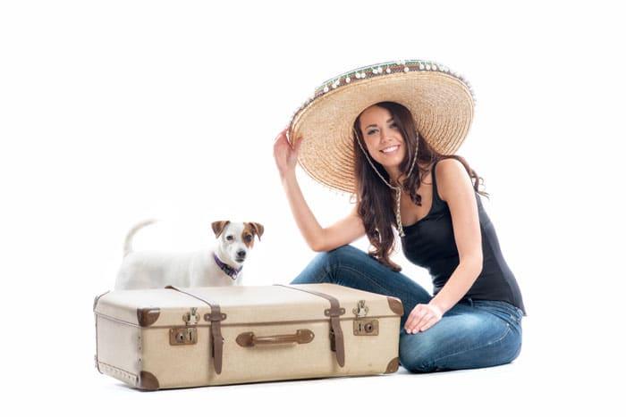 reise-mit-hund
