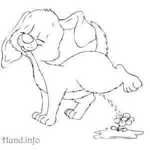 Ausmalbild-Hund-Pipi