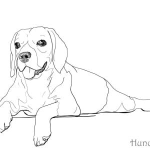 Ausmalbild-Hund-liegend