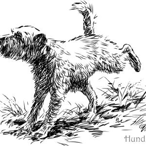 Ausmalbild-Hund-markiert