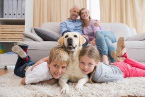 Kinder und Hunde – Umgang und Zusammenleben