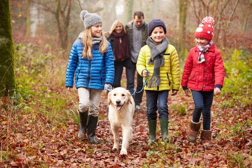 Umgang-mit-dem-Hund-Kinder