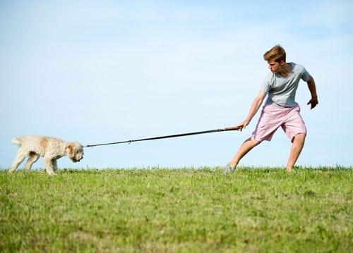 leinenproblem-hund