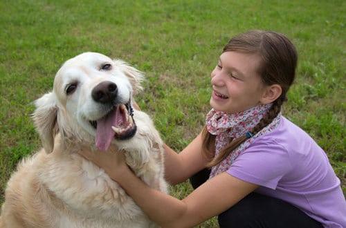 Prächtig Die Körpersprache des Hundes ⋆ Hunde &QB_52