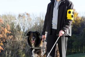 Blindenhunde sind nicht nur Helfer, sondern auch Freunde fürs Leben