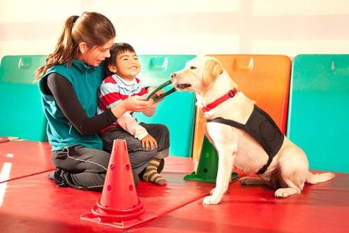 Therapiehund-mit-Kind