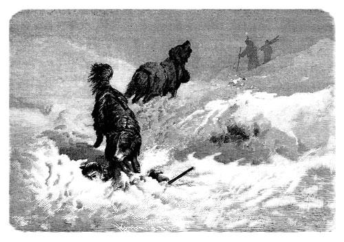 schon früher wurden Hunde zum aufspüren Verschütteter verwendet