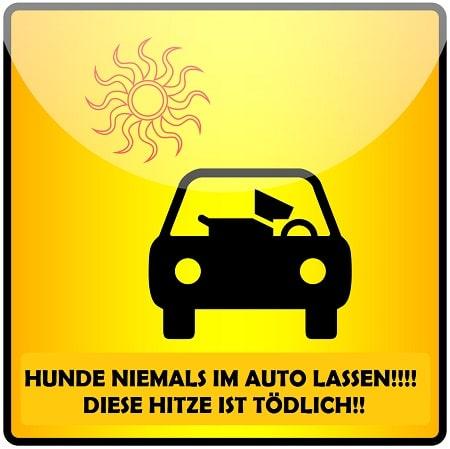 Warnung Hund nicht im Auto lassen