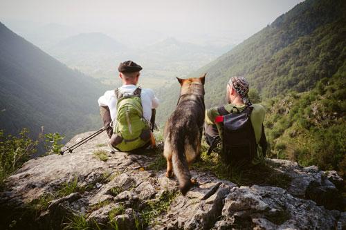 trekking-mit-hund