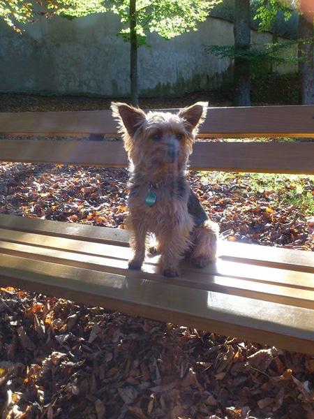 von Petra: der kleine Ronny im Schloßpark