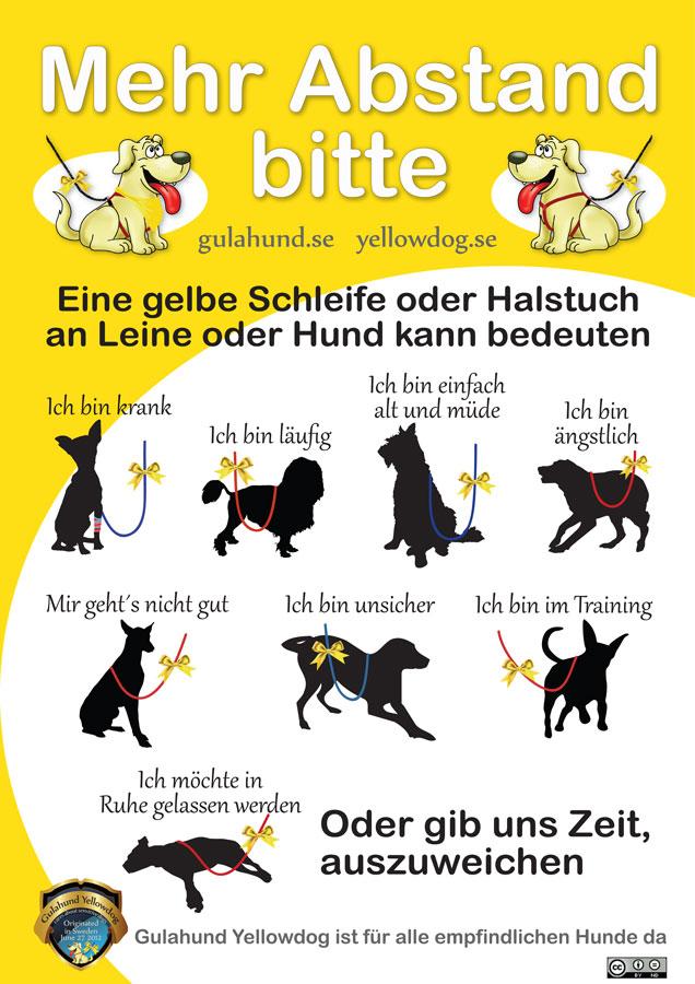 gelber-hund