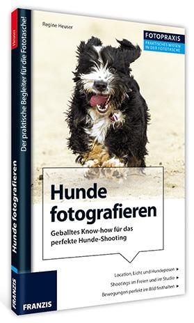 hunde-fotografieren