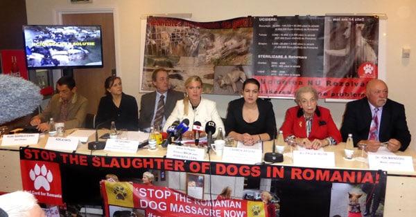 Maja v. Hohenzollern Presekornfi Bukares Rumänien gegen Hundemord