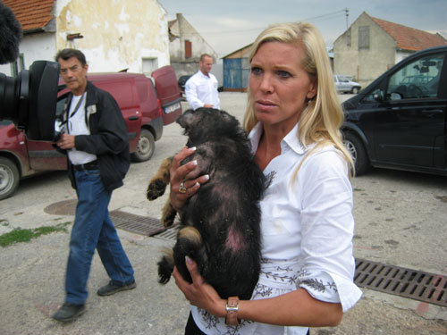 Maja v.Hohenzollern befreit Hunde aus Tötungsstation in Brasov Rumänien
