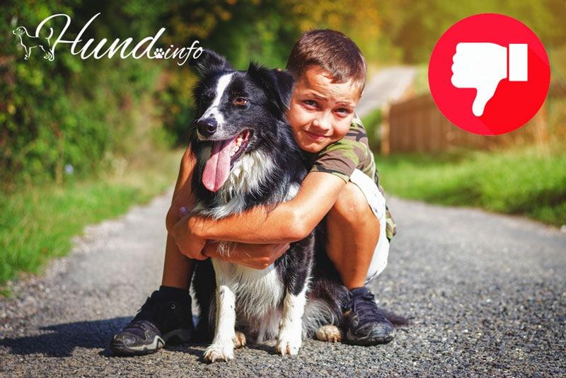 Zwangsumarmung ist Hunden unangenehm