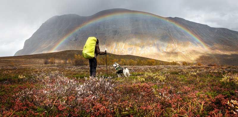 Leinenpflicht in Schwedens Naturreservaten