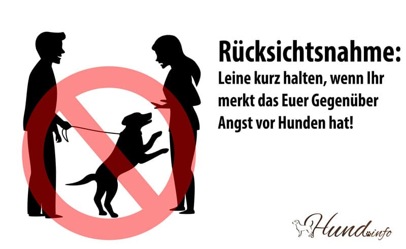 Hundehalter Rücksicht