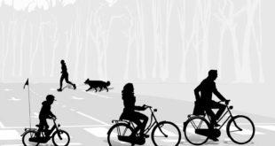 hunde-vs-fahrrad