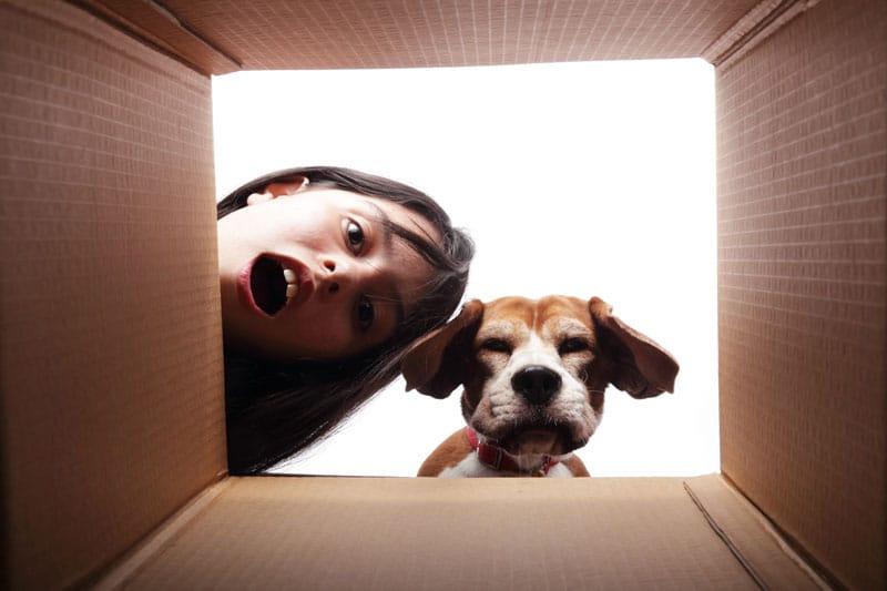 geschenkideen-fuer-hundebesitzer