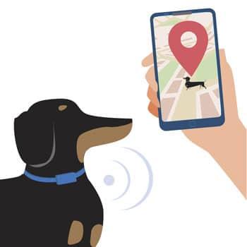 gps tracker fuer hunde