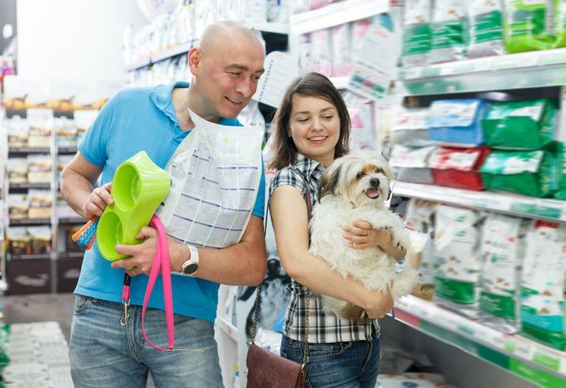 Anschaffungskosten Hund