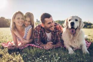 hund-und-familie