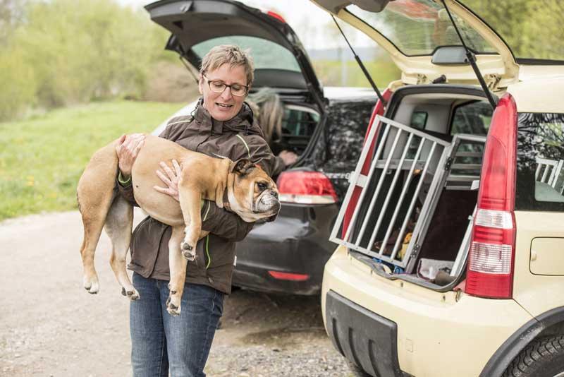 Hund ins Auto heben