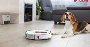 Roidmi-Bild-mit-Hund